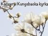 Konsert i Kungsbacka kyrka 15/5 18:00